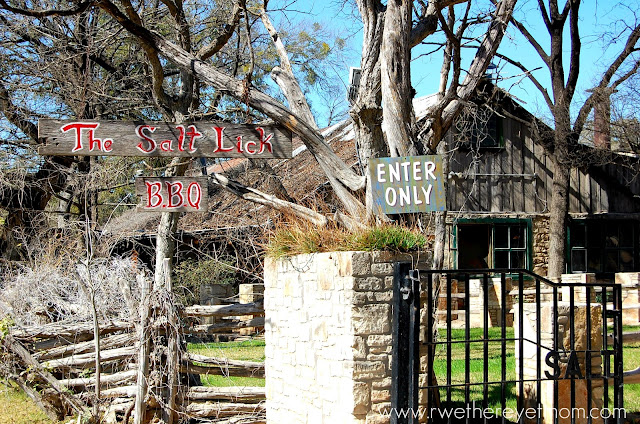 With you salt lick driftwood photo with