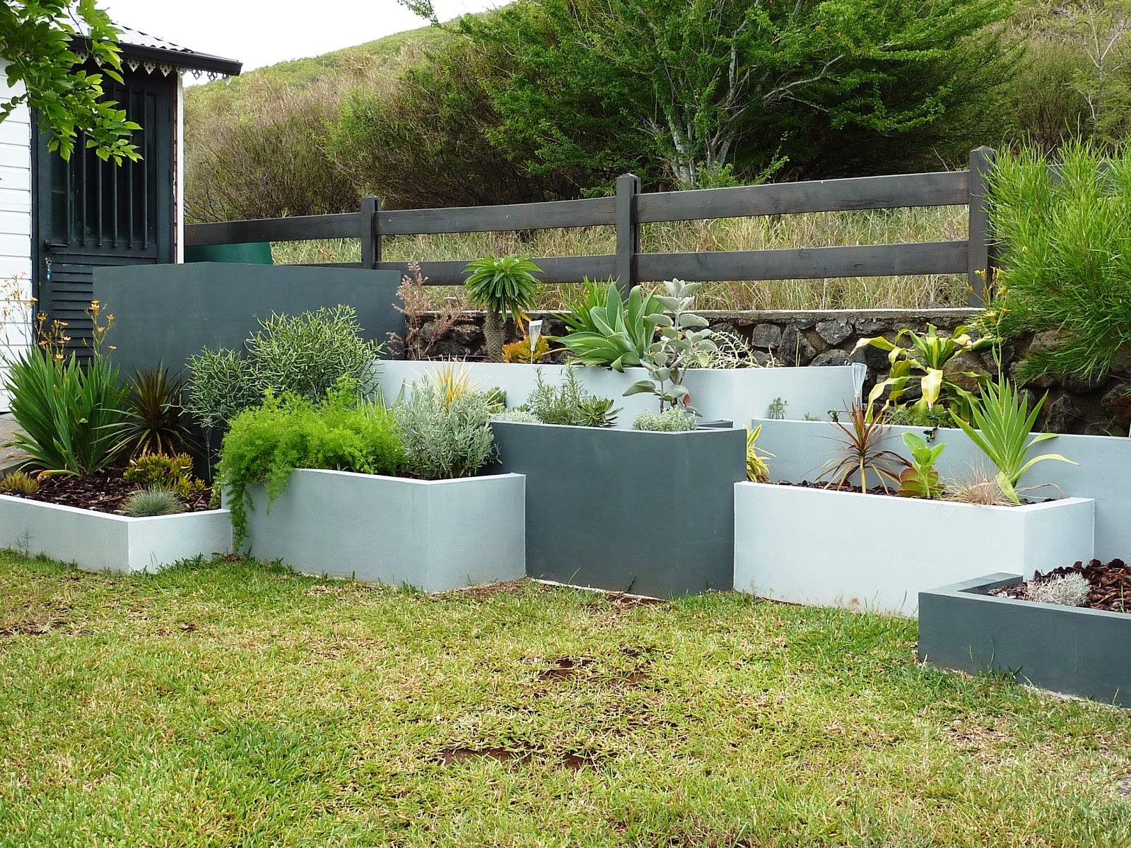 Ma maison la r union mars 2013 for Entretien jardin reunion