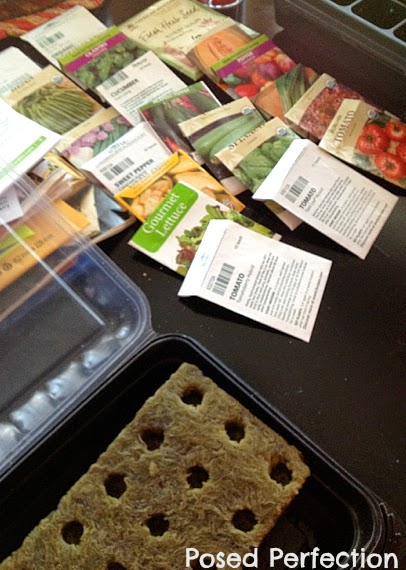 Choosing Seeds for Tower Garden