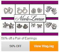 Pair of Earrings WagJag Deal