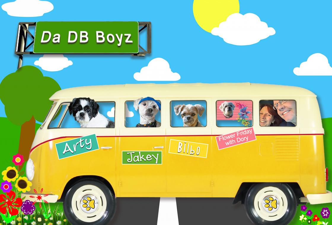Da DB Boyz