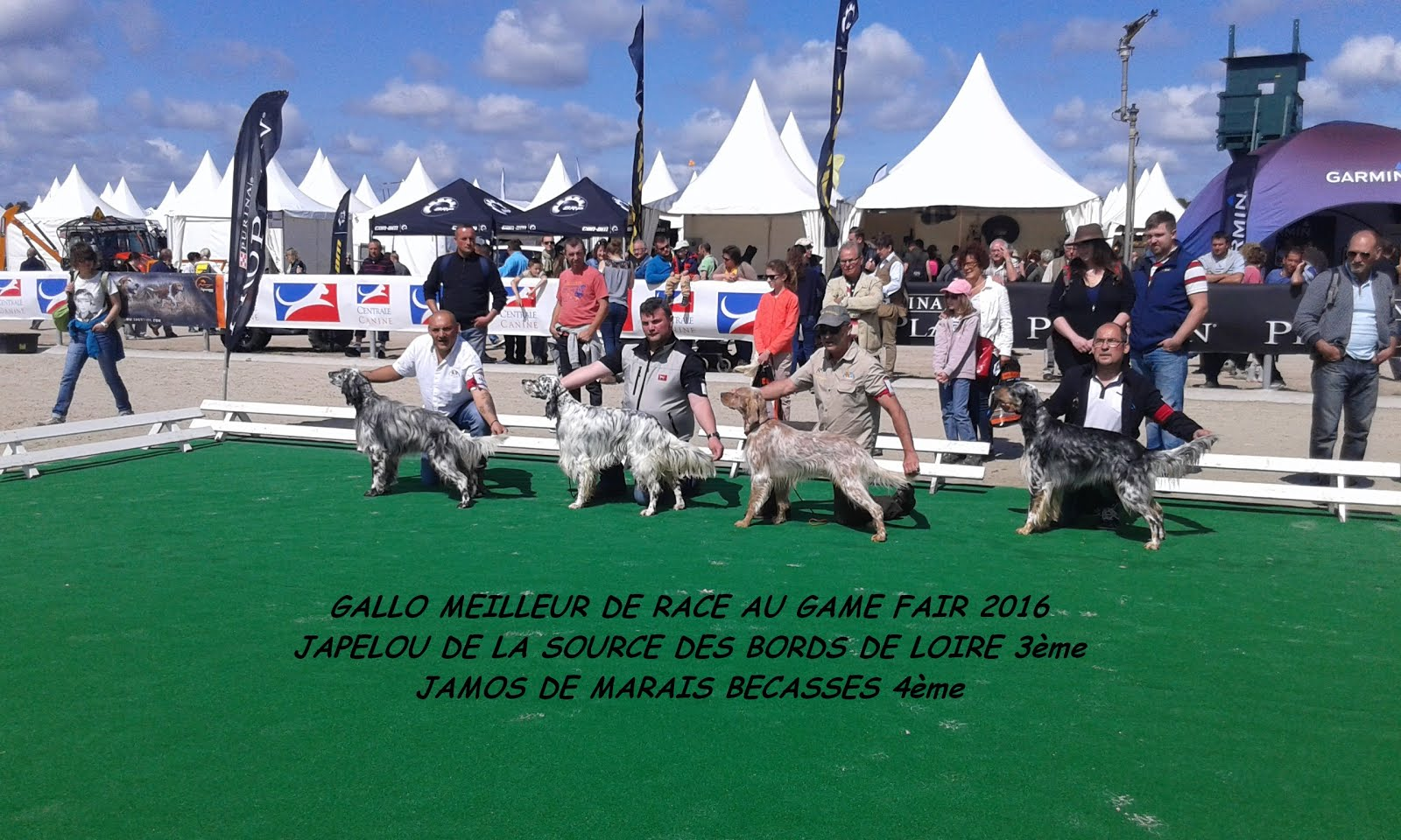 Game-Fair (LAMOTTE BEUVRON)
