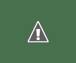 Makanan Yang Membakar Lemak Dengan Cepat
