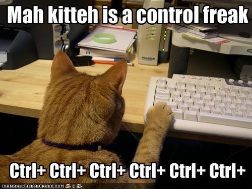 Grateful for the Ride Control-freak-cat