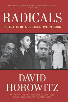 Radicals - Portraits Of A Destructive Passion