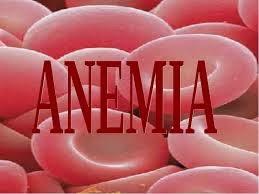 Cara Mengatasi Dan Mencegah Penyakit Anemia