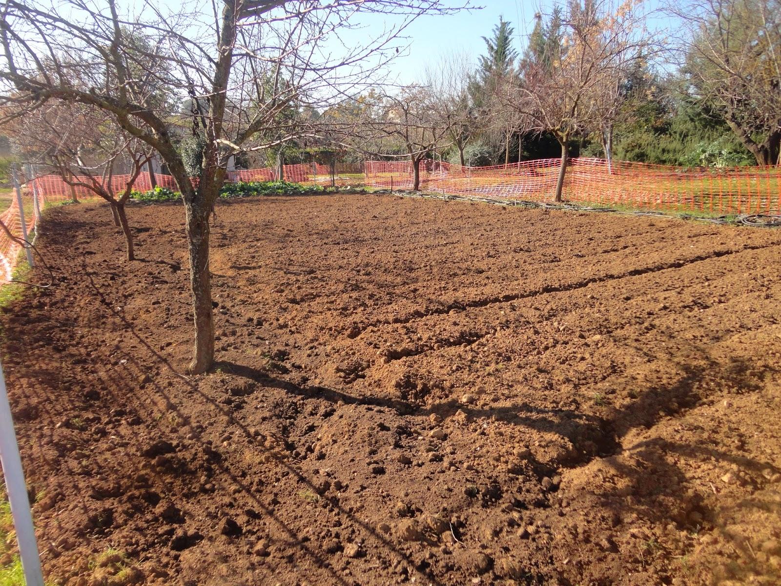 El terrao dos urbanitas en el campo d as de invierno en for Preparar el huerto en invierno