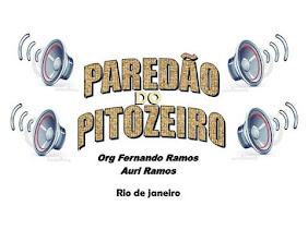 PAREDÃO DO PITOZEIRO - RIO DE JANEIRO