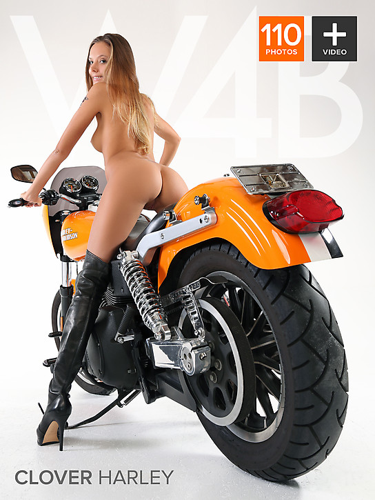 Clover_Harley W22B 2013-08-03 Clover - Harley i0805