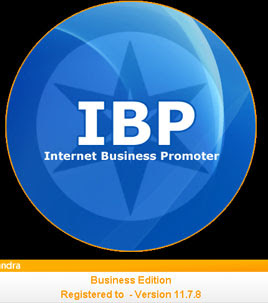 Internet Business Promoter 11.6