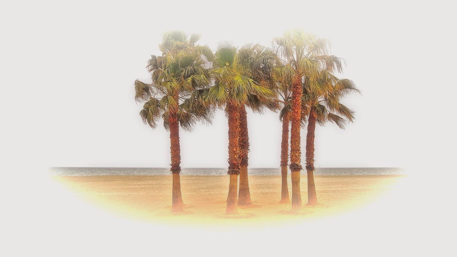 Islalimón la isla de Stimuls