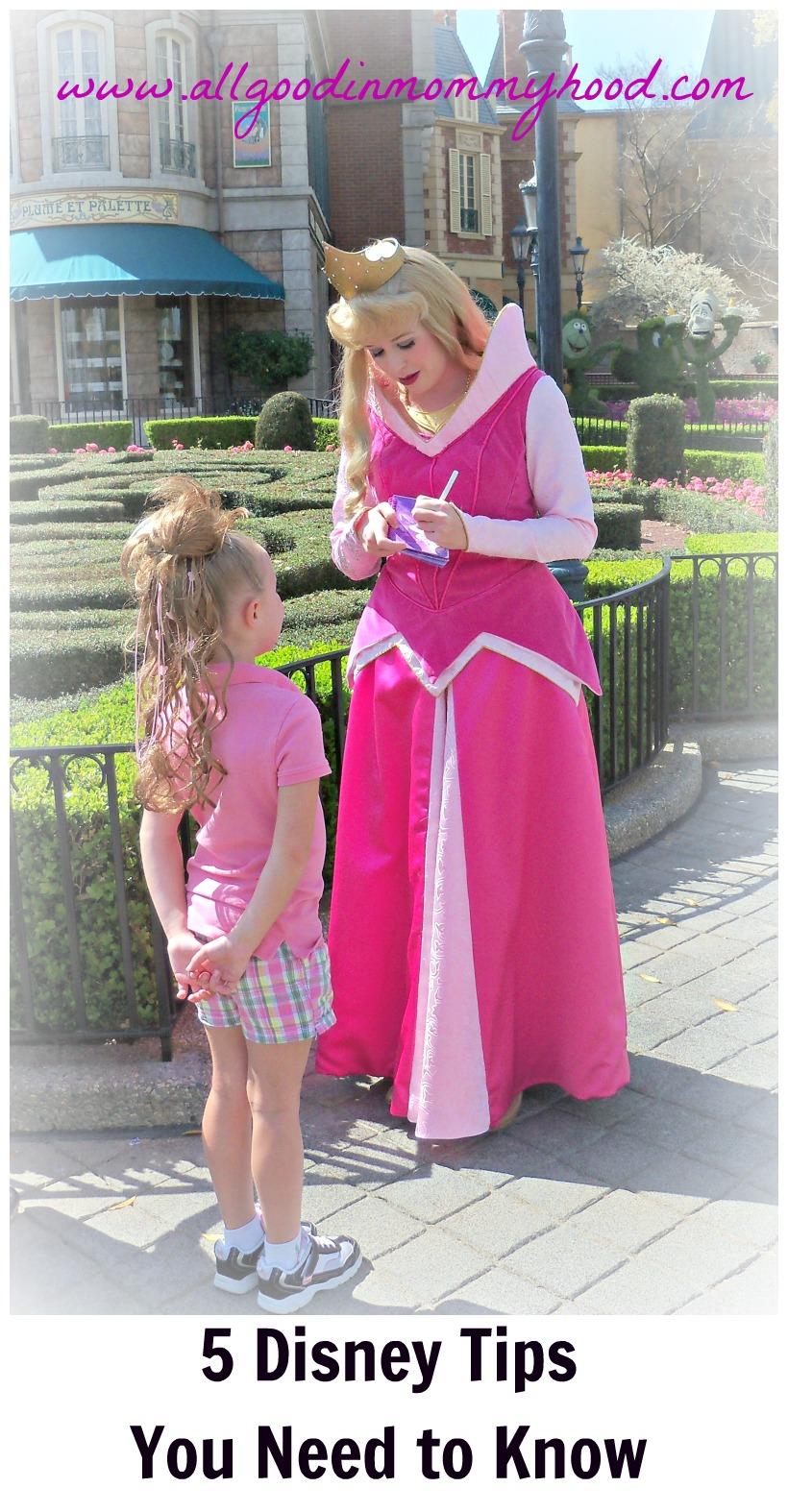 Planificación Antes de decir, me voy a Disney World!