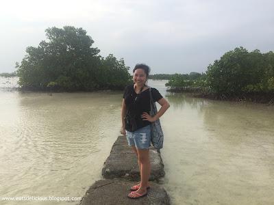 Olango Island Cebu Wildlife Sanctuary 3