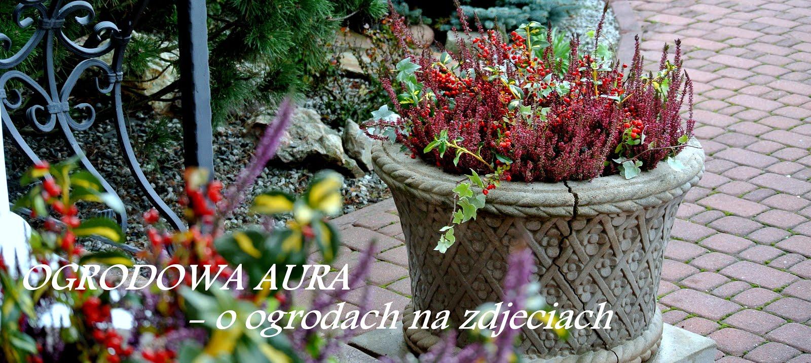 OGRODOWA AURA - o ogrodach na zdjęciach
