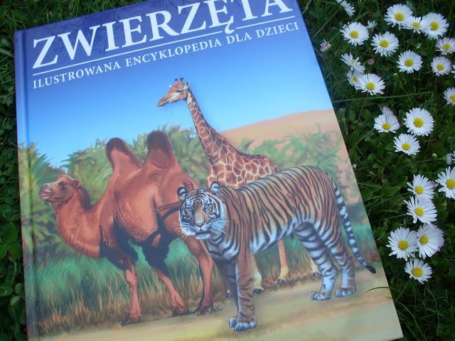 http://siedmiorog.pl/encyklopedia-zwierzeta.html
