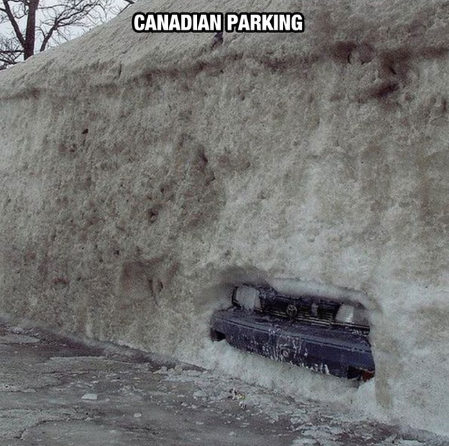 That's cold. - Life In Canada Is So Much Different, And Colder, Than Life Anywhere Else.