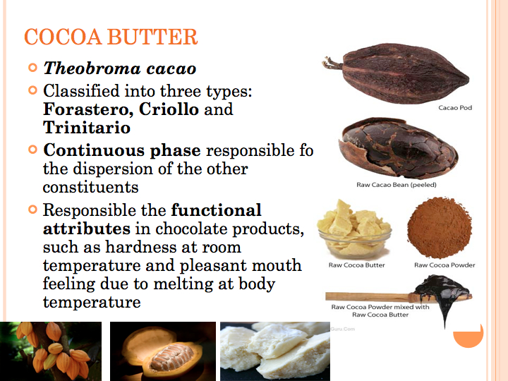 how to make homemade chocolate from cocoa beans