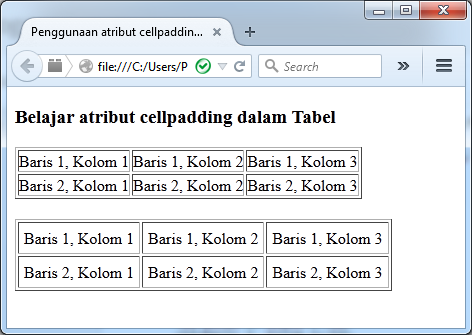 Atribut border cell padding dan cell spacing dalam tabel for Table th cellspacing