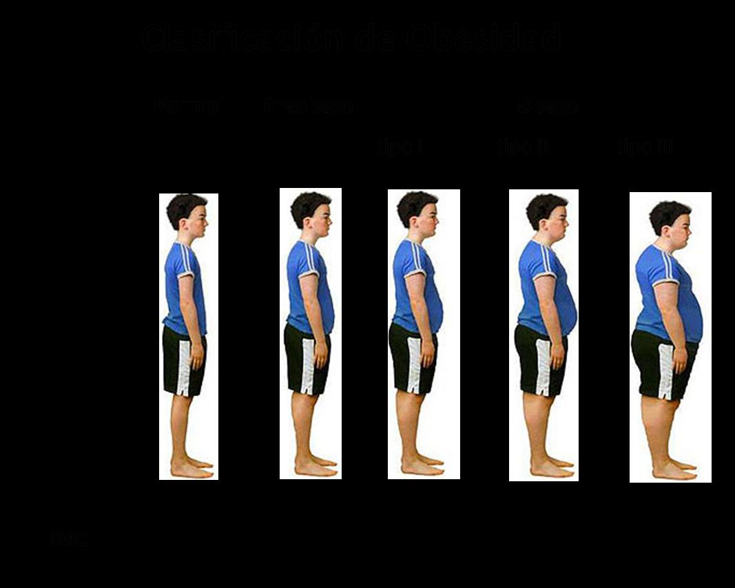 en cuanto tiempo puedo bajar 10 kilos con dieta y ejercicio