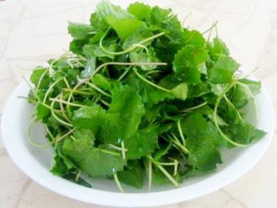 Món ăn tốt cho sức khỏe người mắc viêm gan B