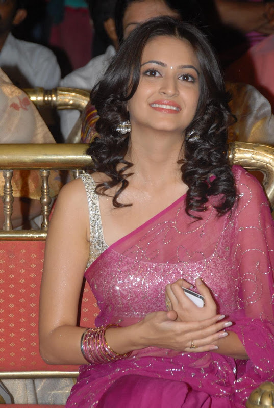 Pawan Kalyans Upcoming Actress Kriti Kharbanda In Hot Saree Stills Photos glamour images