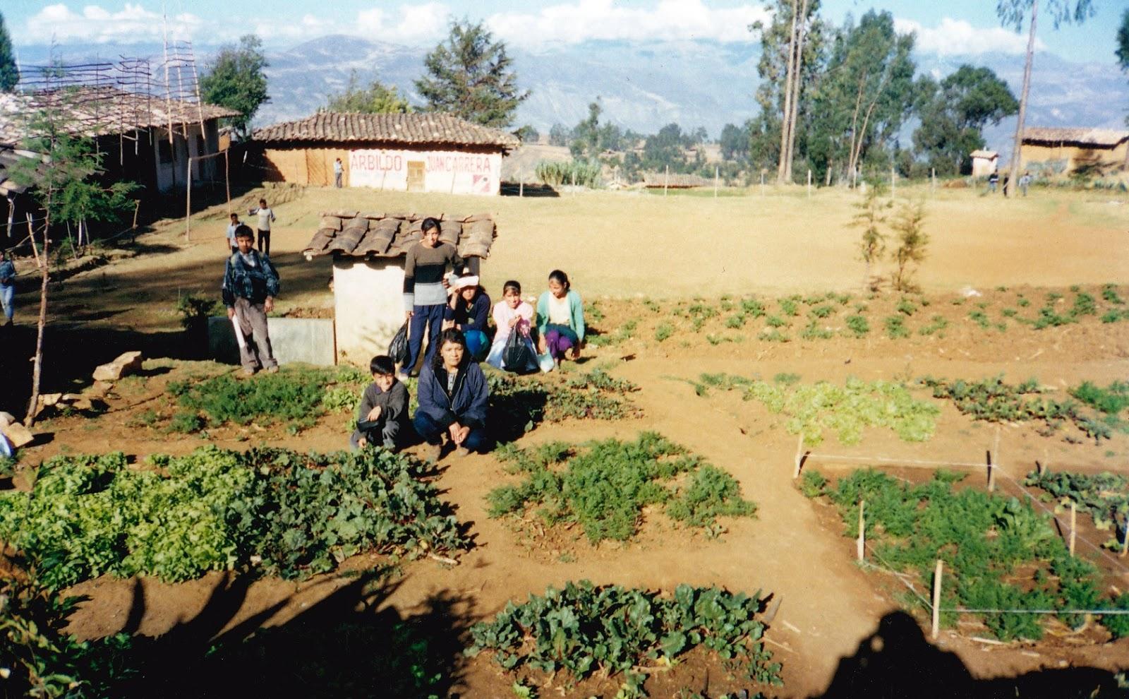 Docente Rural | Hacia una Comunidad Lectora e Innovadora de ...