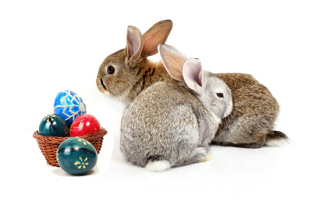 Free Download Easter 2013 HD Wallpapers for Android Tablets