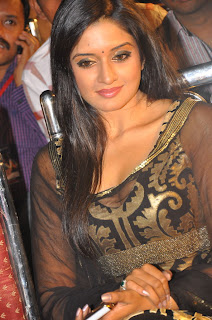 Vimla Raman Latest Pictures at Nuvva Nena Movie Audio Launch Stunning Spicy Vimla
