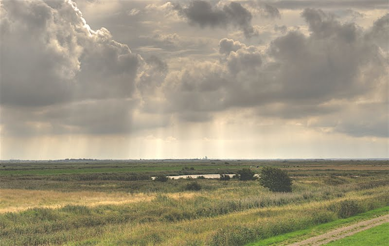 Himlen over marsken: