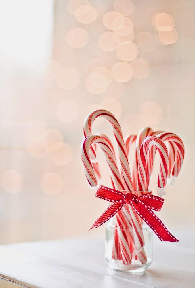 Laska świąteczna w sloiku