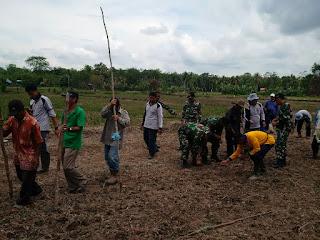 Petani Bersama TNI Menanam Padi