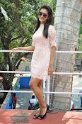 Pooja Jhaveri latest glam pics-thumbnail-17