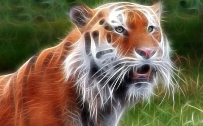 amazing wild animals - tiger manipulations