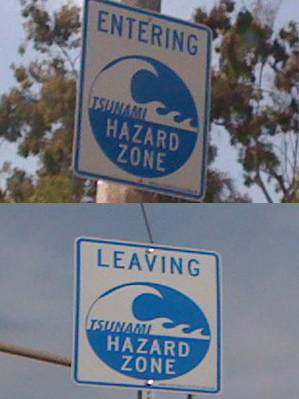 tsunami warning systems essay