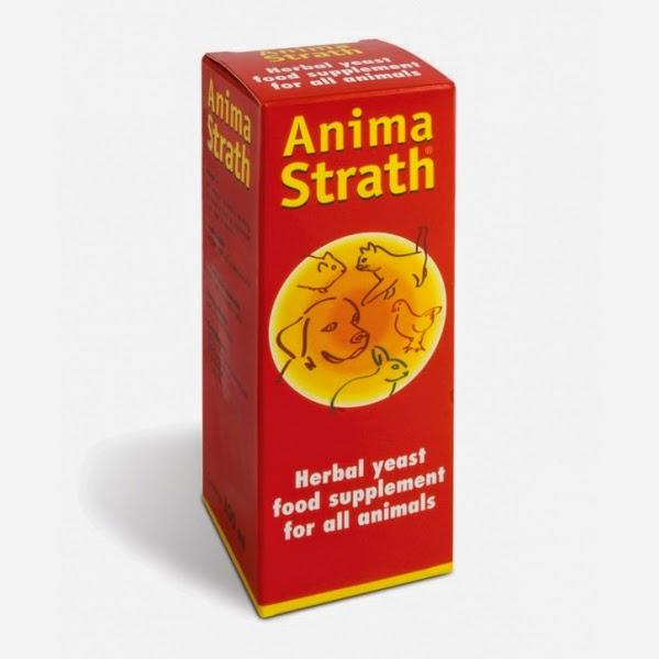ANIMA STRATH - AKCIJA MESECA