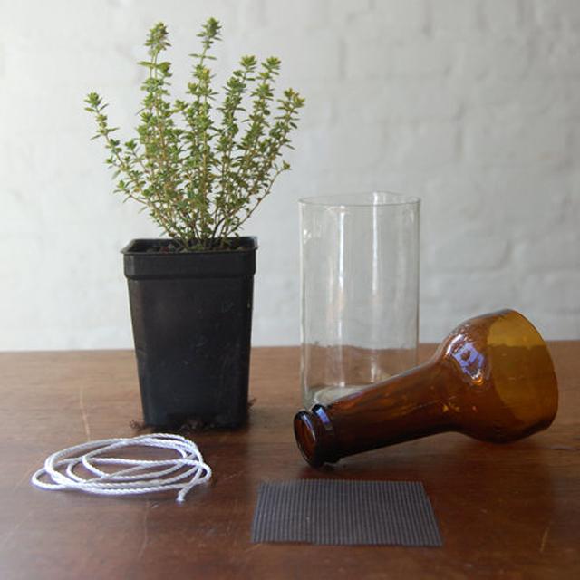 Como fazer um sistema de irrigação capilar em casa com uma garrafa reciclada
