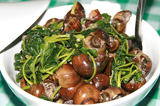 Ginataang Kuhol Filipino Exotic Dish