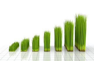 Contoh Investasi Tanah Yang Mempunyai Prospek