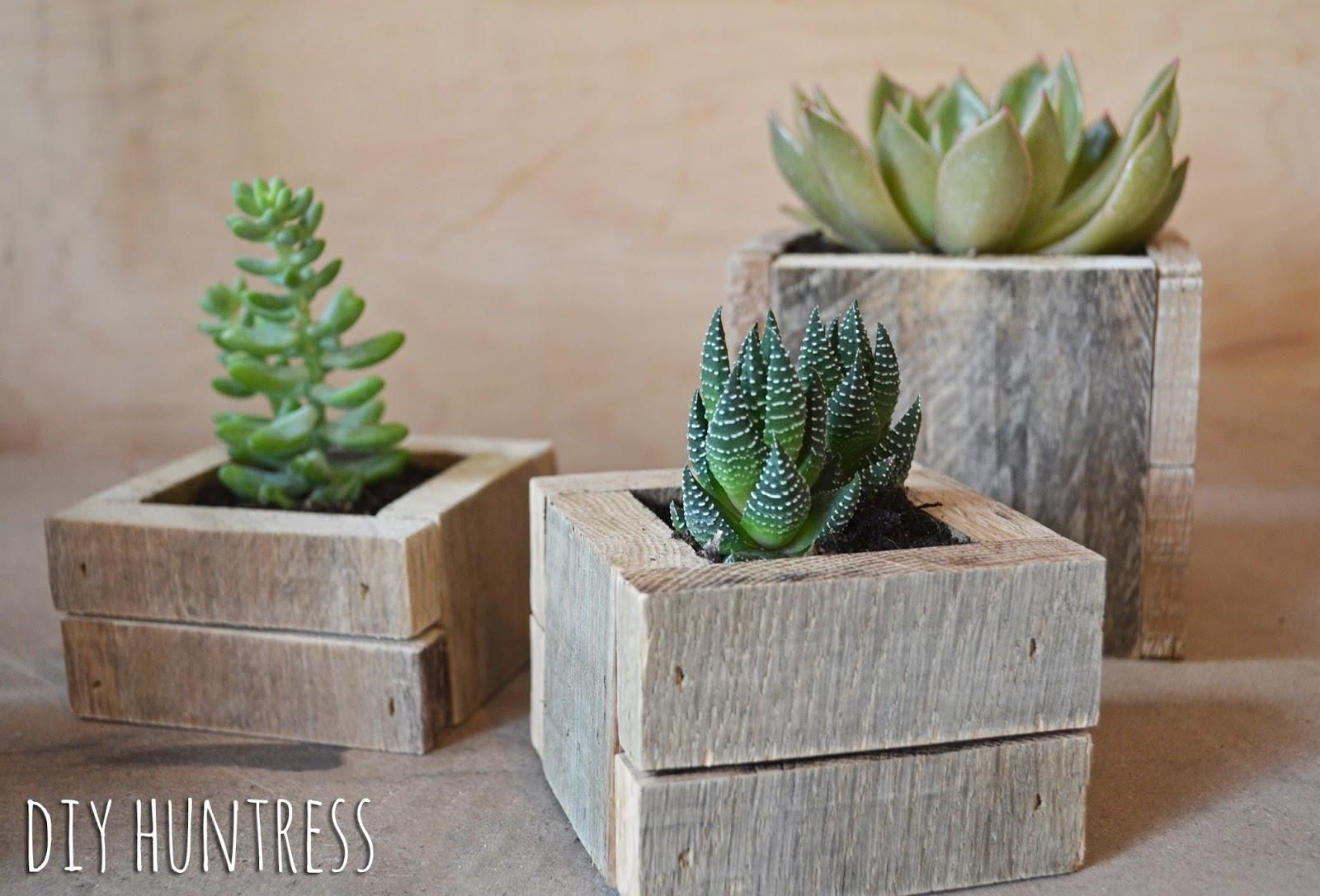 Diy pallet wood succulent planters diy huntress for Wooden cactus planter