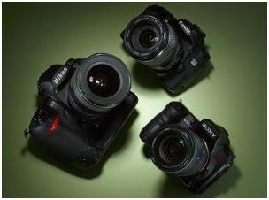 Understanding Basics Photography & Cameras