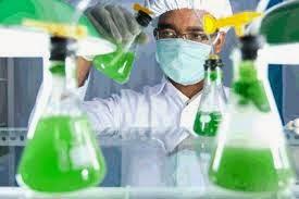 khasiat spirulina