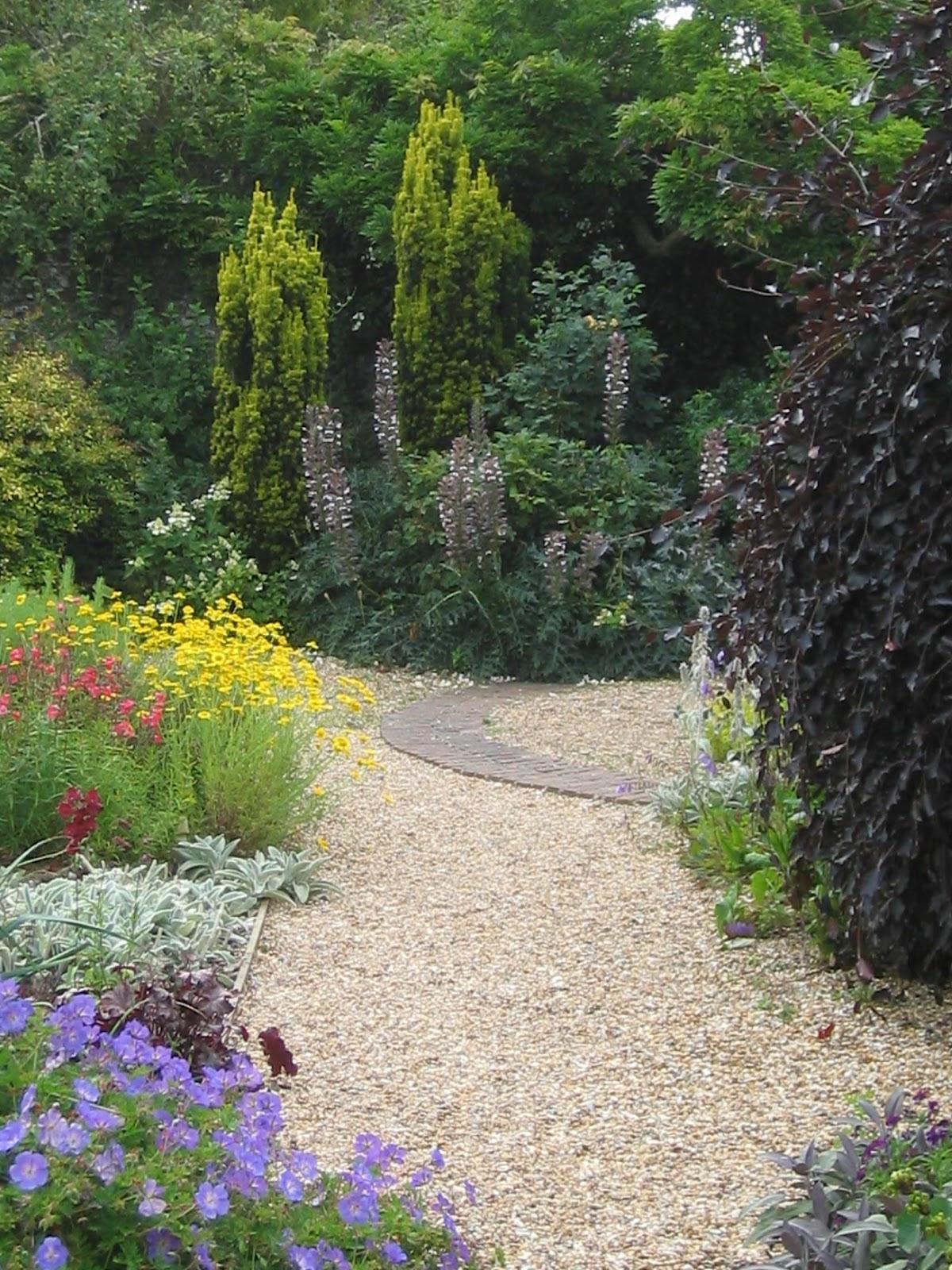 How to rejuvenate your shrubs john brookes raves rants - Garden design john brookes ...