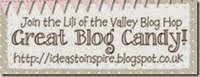 Blog Hop bei Lili of the Valley