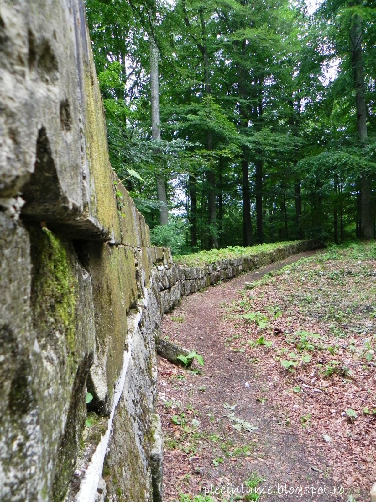 Zidul cetatii de la Sarmizegetusa Regia