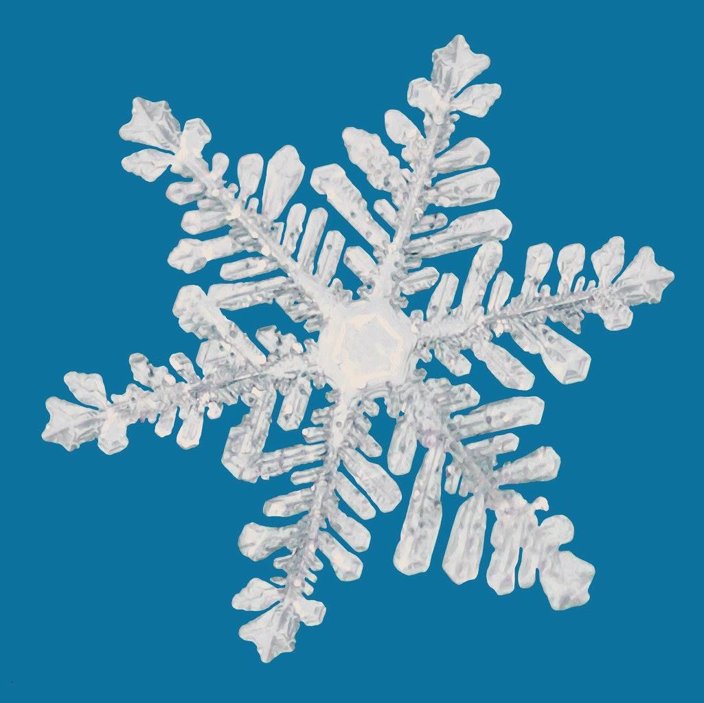 dance school closed snow charlotte