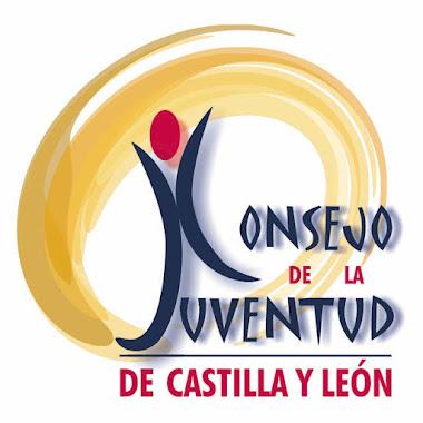 CONSEJO DE LA JUVENTUD