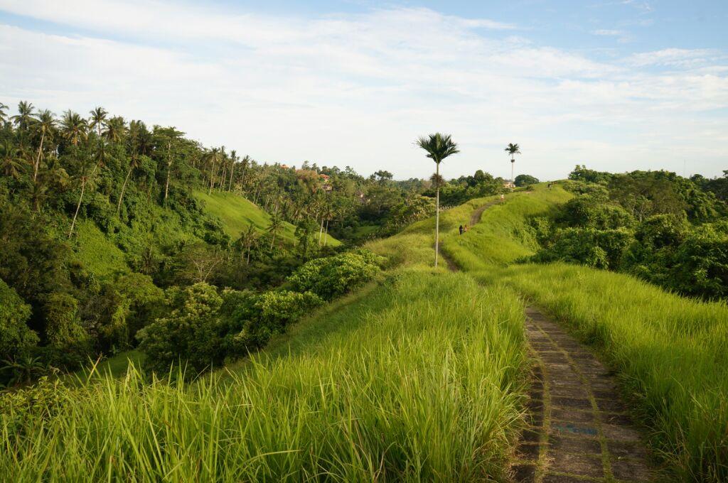 Jolie promenade à Ubud