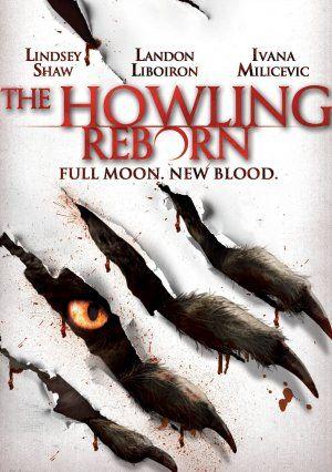 http://www.imdb.com/title/tt1554092/