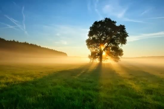 Image Result For Manfaat Sinar Matahari Di Sekitar Kita