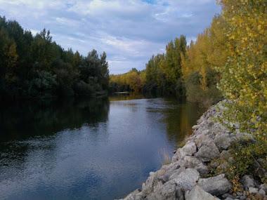 Rio Esla T.L.S de Villomar